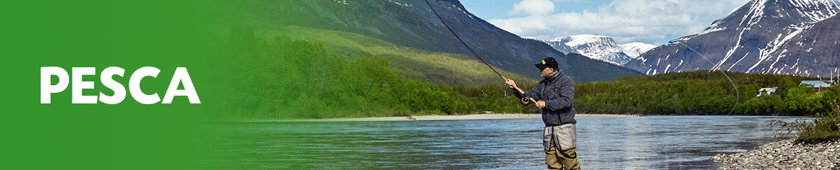 Banner Pesca